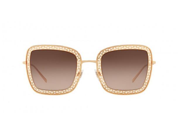 Dolce & Gabbana DG 2225-02/13